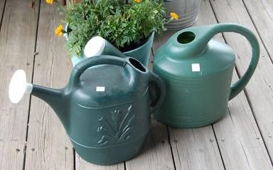 Monroe  - Watering Can, Green