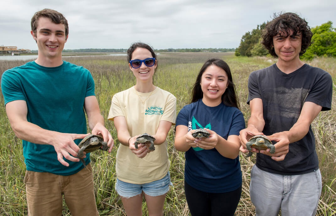 UNCW Students perform research
