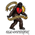 Old Dominion 'No Such Thing as a Broken Heart'