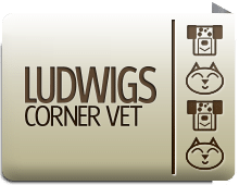 Ludwigs Corner Vet in Chester Springs.