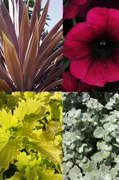 /Images/johnsonnursery/product-images/MXDP15MP_2msanved0.jpg