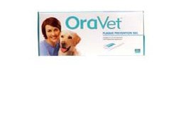 The Sound Cat Veterinary Hospital Dental Hygiene