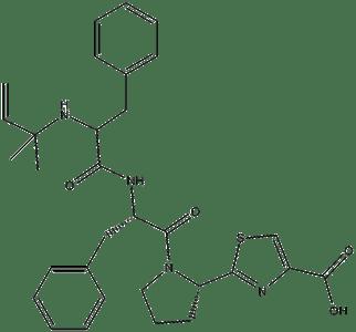Aeruginosamide D