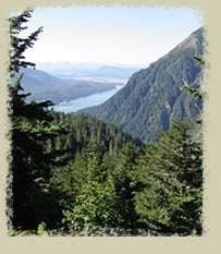 Alaska Wolf Lodge - 1