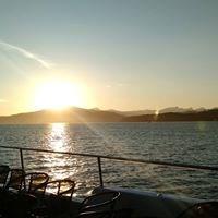 Accent Cruises - 1