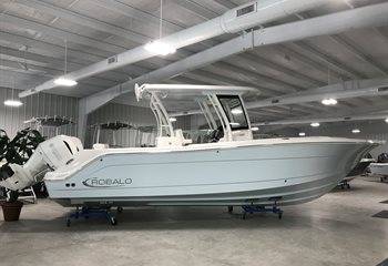 2020 Robalo R302 Ice Blue (ON ORDER) Boat