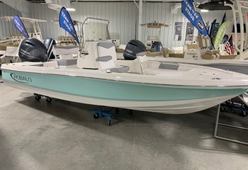 2020 Robalo R206 Seafoam/White #F0171 liquid-unknown-field [type] Boat